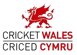 Wales's badge